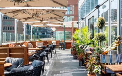 Raising the Rooftop Dining Experience